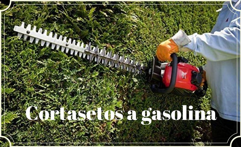 cortasetos a gasolina